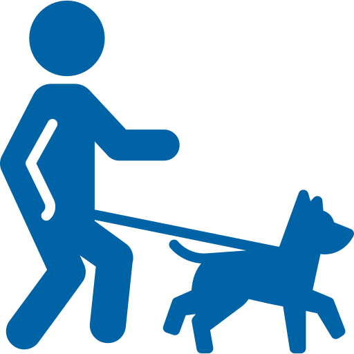 walking-the-dog.png